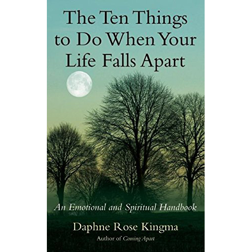 The Ten Things to Do When Your Life Falls Apart book review